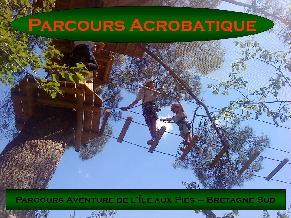 Parcours Acrobatique Respectueux des arbres et de lenvironnement, nous apportons une importance particulière au travail soigné.