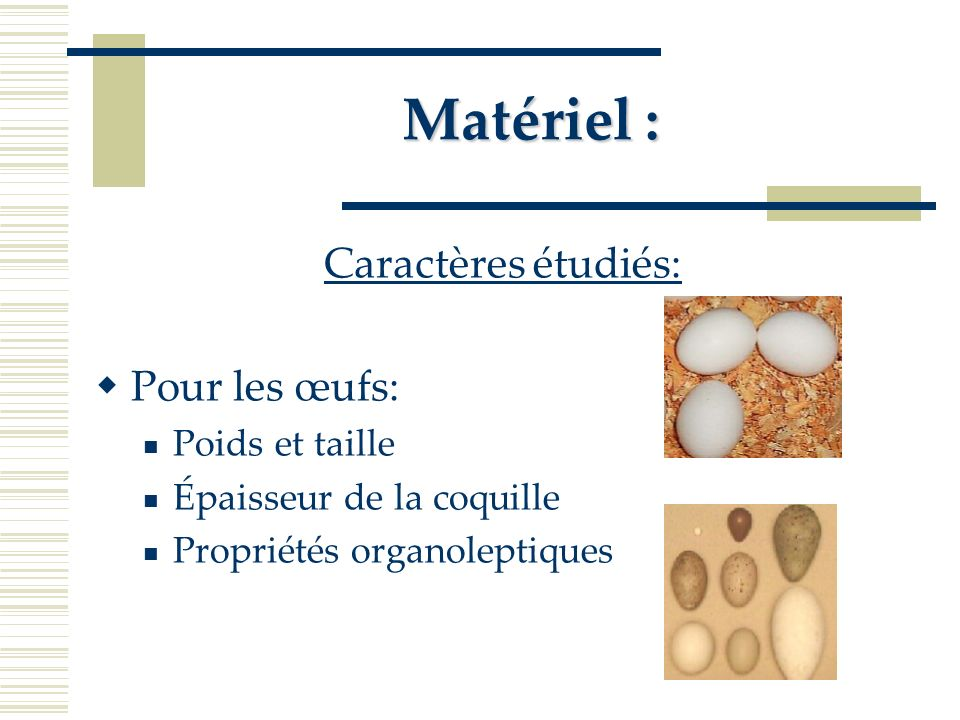 Matériel : Précisions : Les volailles sont abattues sur place pour éliminer le facteur stress du au transport qui influence la qualité de la viande (pH, viande PSE, aptitude à retenir leau…)