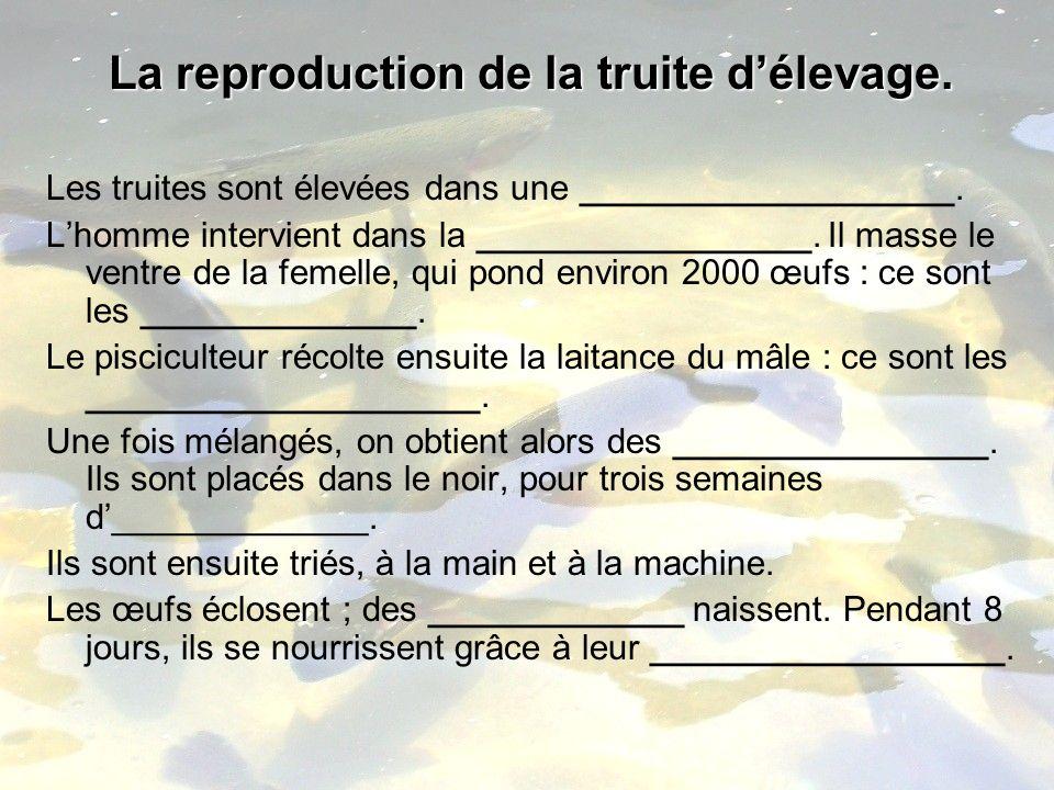 La reproduction de la truite délevage. Bousquet Caroline, Laforgue Anne Laure, Ladurantie Stéphanie, Kanfoudy Virginie. Validation biologie CFP, PE2 a