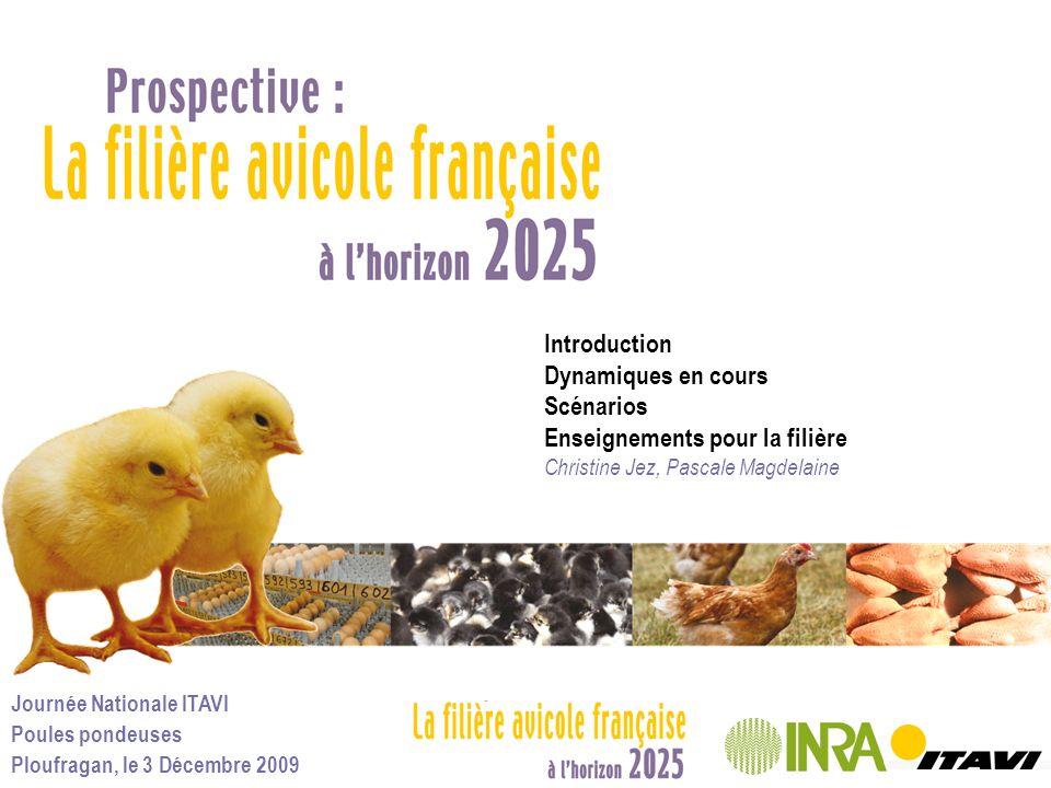 Journée Nationale ITAVI Poules pondeuses Ploufragan, le 3 Décembre 2009 Une érosion de la consommation, un développement de la part des ovoproduits 22% en 1997, 31% en 2007 Élaboration ITAVI daprès SCEES