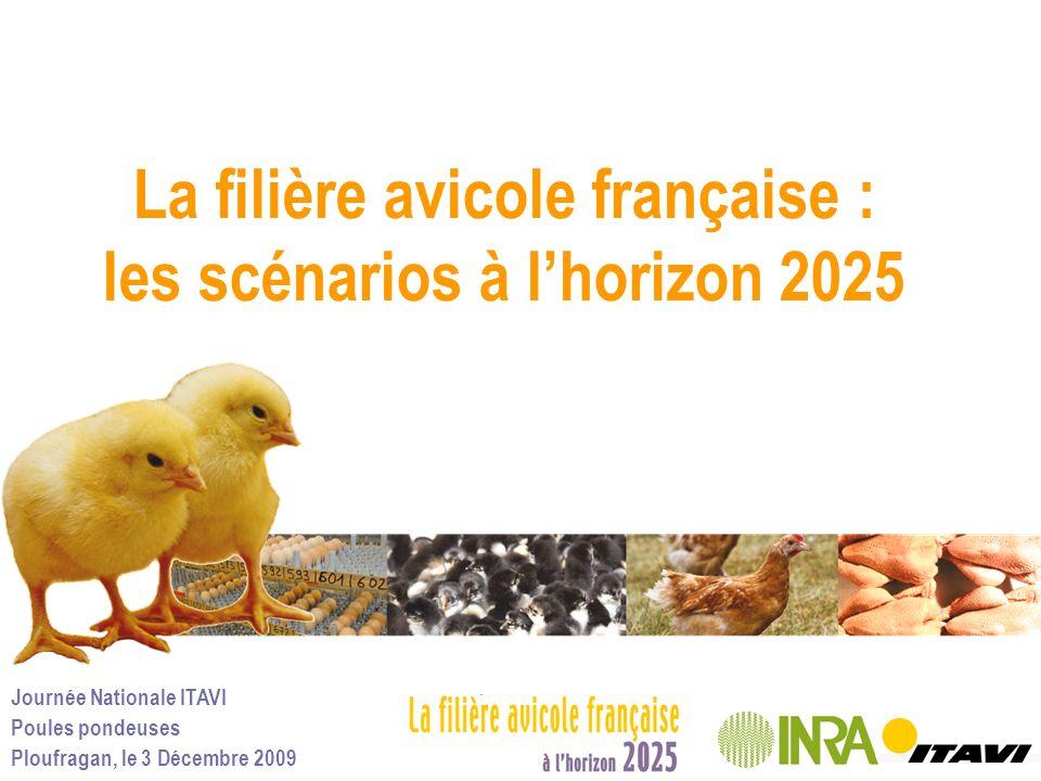 Journée Nationale ITAVI Poules pondeuses Ploufragan, le 3 Décembre 2009 La filière avicole française : les scénarios à lhorizon 2025