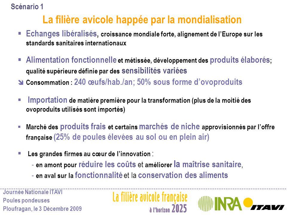 Journée Nationale ITAVI Poules pondeuses Ploufragan, le 3 Décembre 2009 Scénario 1 La filière avicole happée par la mondialisation Echanges libéralisé