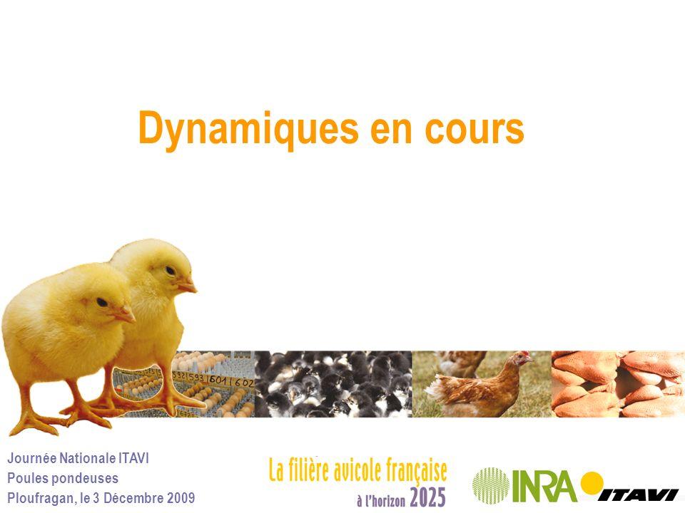Journée Nationale ITAVI Poules pondeuses Ploufragan, le 3 Décembre 2009 Dynamiques en cours