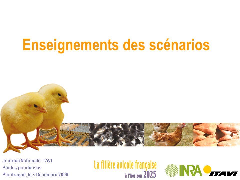 Journée Nationale ITAVI Poules pondeuses Ploufragan, le 3 Décembre 2009 Enseignements des scénarios
