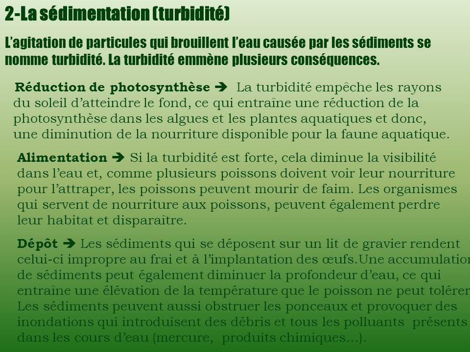 Facteurs influençant la qualité de leau On distingue 4 principaux facteurs qui influencent la qualité de leau. 1 -La végétation riveraine Alimentation