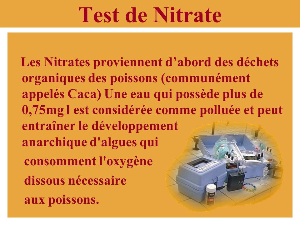 Test danalyse deau Lors de notre sortie au Lac-des-îles, nous avons recueilli des échantillons deau et nous avons effectué 5 tests pour connaître la q
