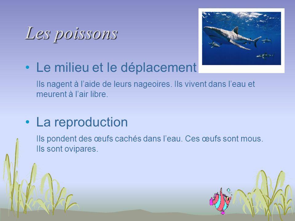 Les poissons Le milieu et le déplacement Ils nagent à laide de leurs nageoires. Ils vivent dans leau et meurent à lair libre. La reproduction Ils pond