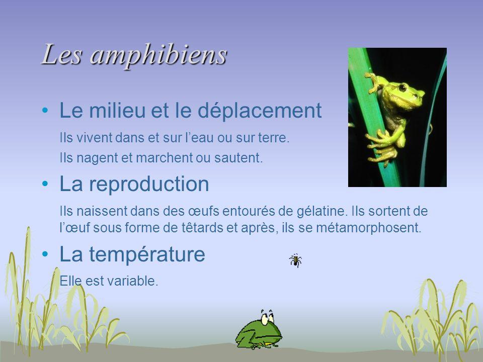 Les amphibiens Le milieu et le déplacement Ils vivent dans et sur leau ou sur terre. Ils nagent et marchent ou sautent. La reproduction Ils naissent d