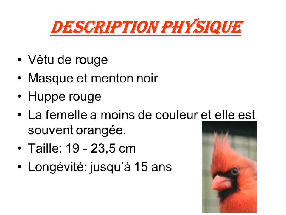 Description physique Vêtu de rouge Masque et menton noir Huppe rouge La femelle a moins de couleur et elle est souvent orangée.