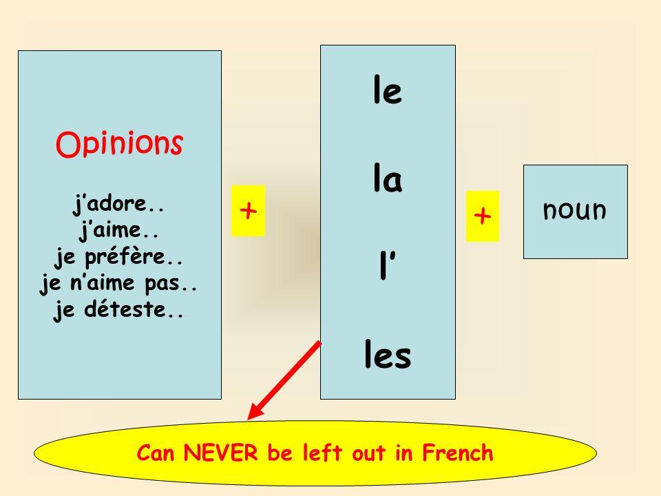 Opinions jadore.. jaime.. je préfère.. je naime pas.. je déteste.. + le la l les + noun Can NEVER be left out in French