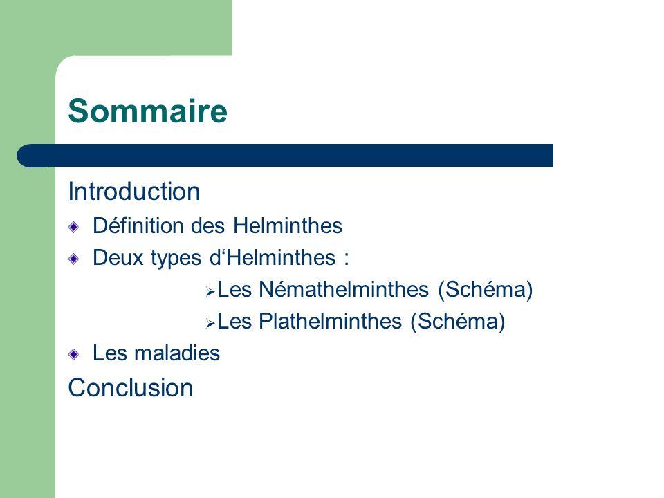 Sommaire Introduction Définition des Helminthes Deux types dHelminthes : Les Némathelminthes (Schéma) Les Plathelminthes (Schéma) Les maladies Conclus