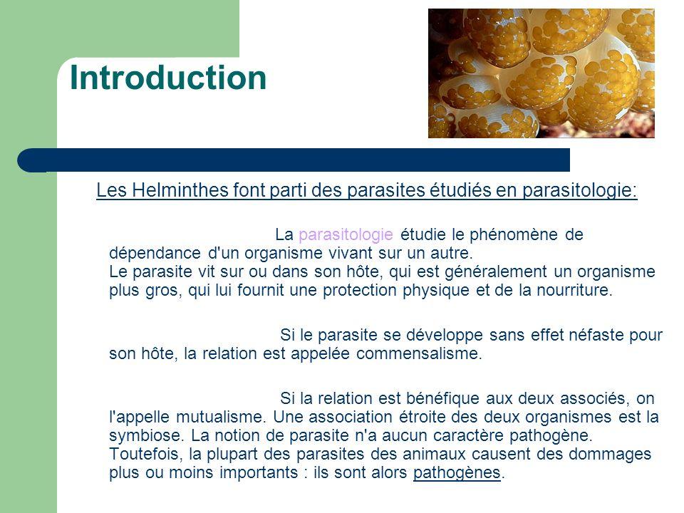 Introduction Les Helminthes font parti des parasites étudiés en parasitologie: La parasitologie étudie le phénomène de dépendance d'un organisme vivan