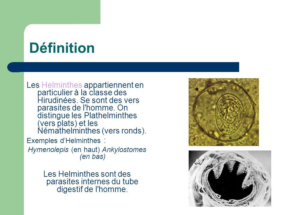Définition Les Helminthes appartiennent en particulier à la classe des Hirudinées. Se sont des vers parasites de l'homme. On distingue les Plathelmint