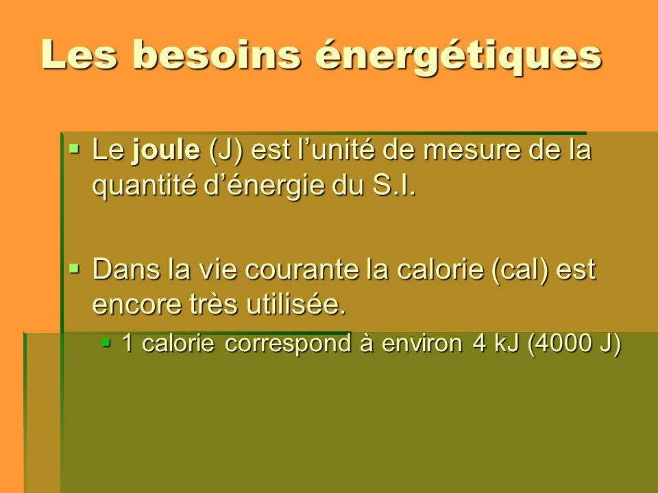 Les besoins énergétiques Le joule (J) est lunité de mesure de la quantité dénergie du S.I. Le joule (J) est lunité de mesure de la quantité dénergie d