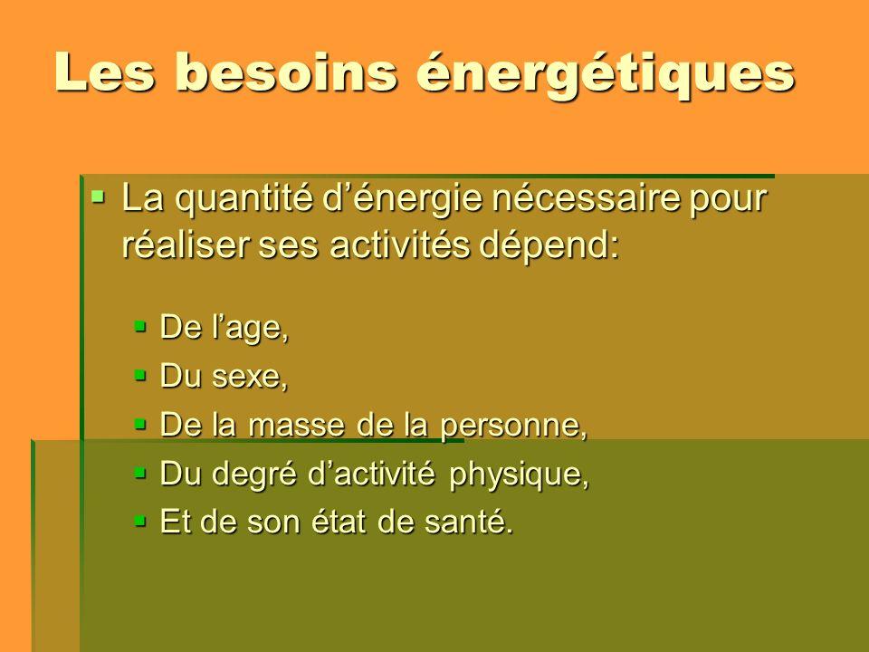 Les besoins énergétiques La quantité dénergie nécessaire pour réaliser ses activités dépend: La quantité dénergie nécessaire pour réaliser ses activit