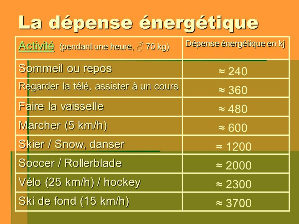 La dépense énergétique ActivitéActivité (pendant une heure, 70 kg) Activité Dépense énergétique en kj Sommeil ou repos Regarder la télé, assister à un