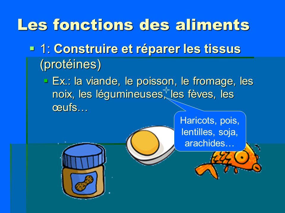 Les fonctions des aliments 1: Construire et réparer les tissus (protéines) 1: Construire et réparer les tissus (protéines) Ex.: la viande, le poisson,