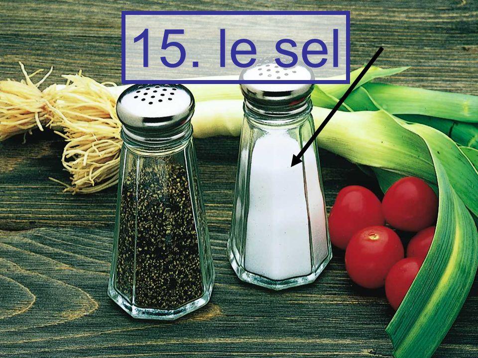15. le sel