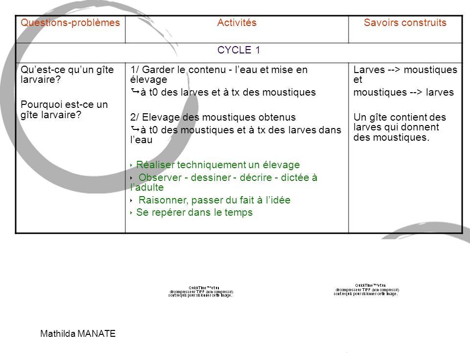Mathilda MANATE7 Questions-problèmesActivitésSavoirs construits CYCLE 1 Quest-ce quun gîte larvaire.