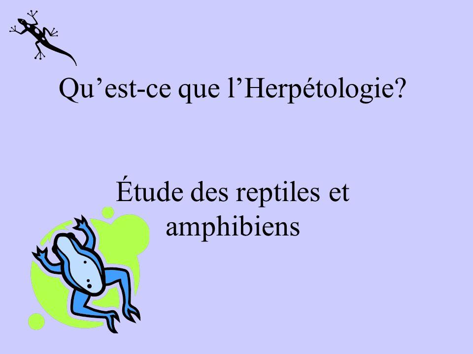 Quest-ce que lHerpétologie? Étude des reptiles et amphibiens