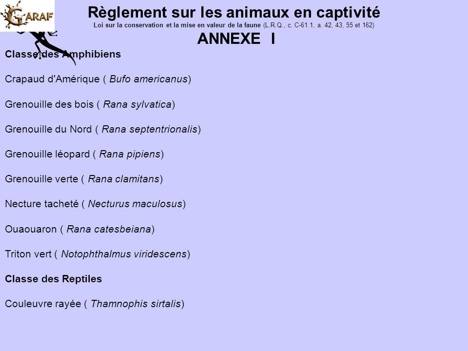 Règlement sur les animaux en captivité Loi sur la conservation et la mise en valeur de la faune (L.R.Q., c. C-61.1, a. 42, 43, 55 et 162) 5. Aucun per