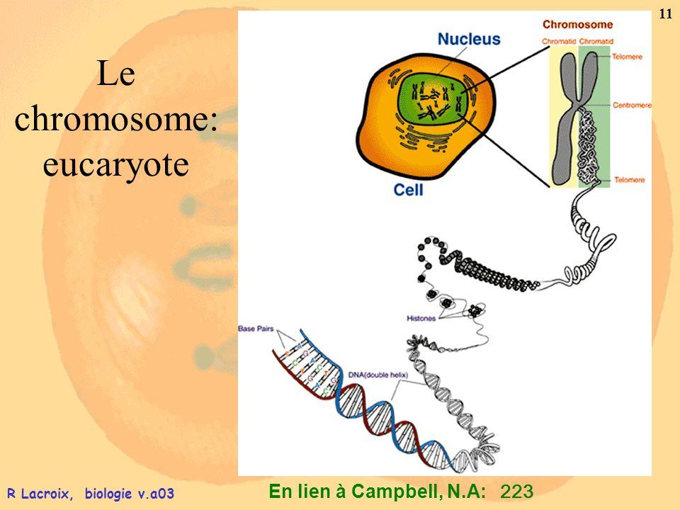 En lien à Campbell, N.A: 11 R Lacroix, biologie v.a03 Le chromosome: eucaryote 223