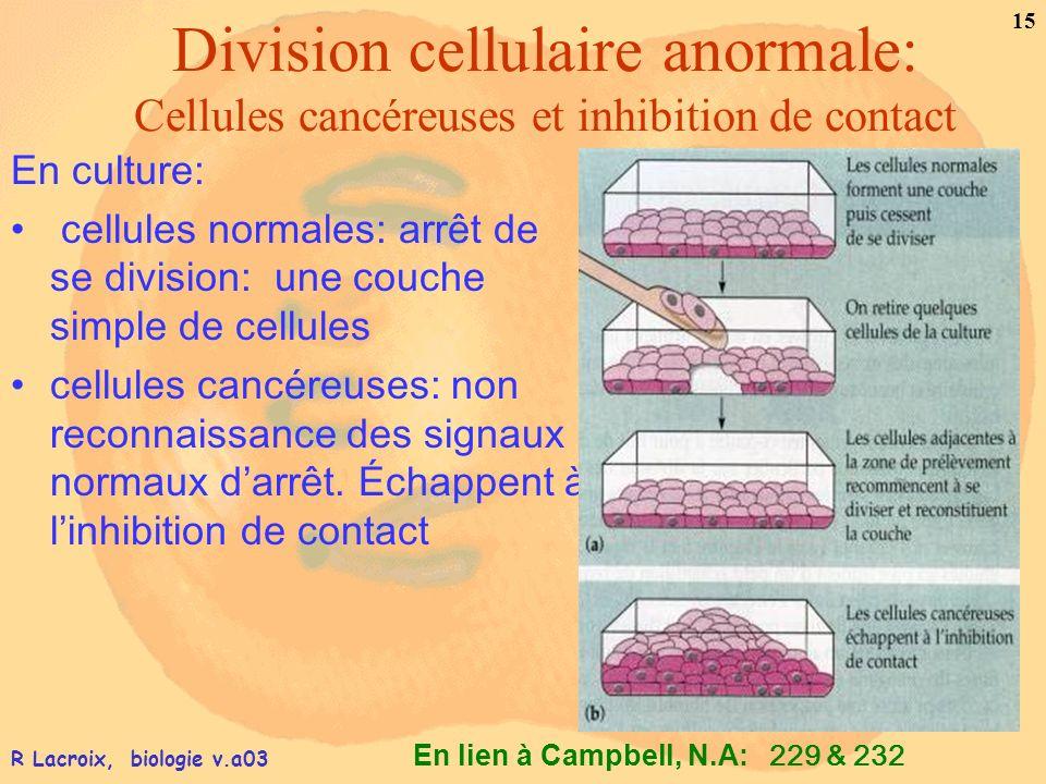 En lien à Campbell, N.A: 15 R Lacroix, biologie v.a03 Division cellulaire anormale: Cellules cancéreuses et inhibition de contact En culture: cellules