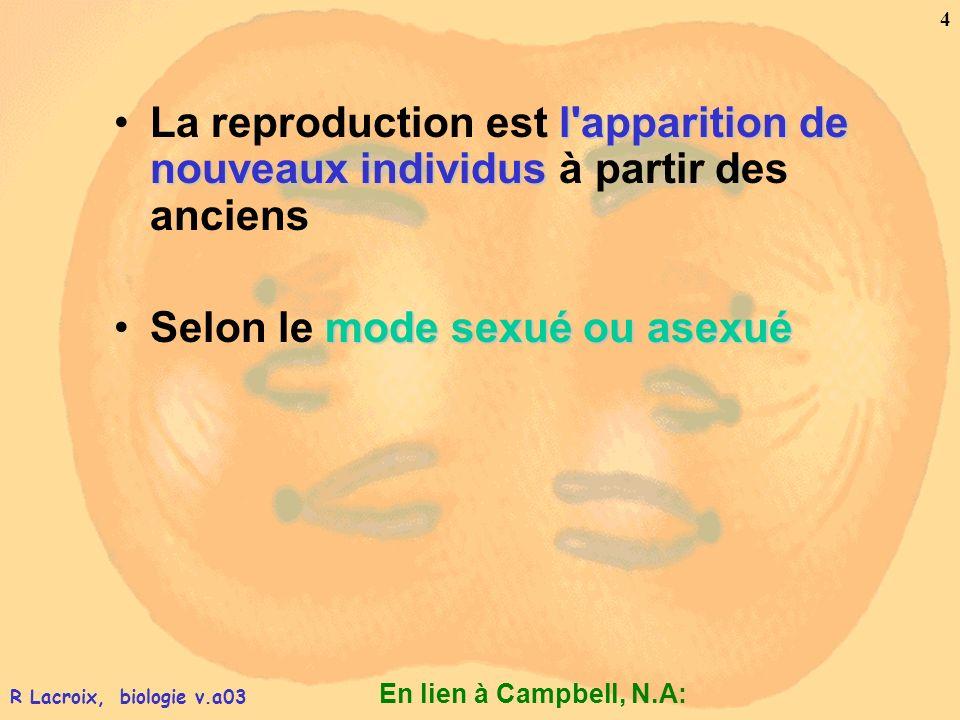 En lien à Campbell, N.A: 5 R Lacroix, biologie v.a03 La reproduction – asexuée et sexuée Reproduction asexuée : –Un seul individu comme unique parent –Sans apport de matériel génétique nouveau.