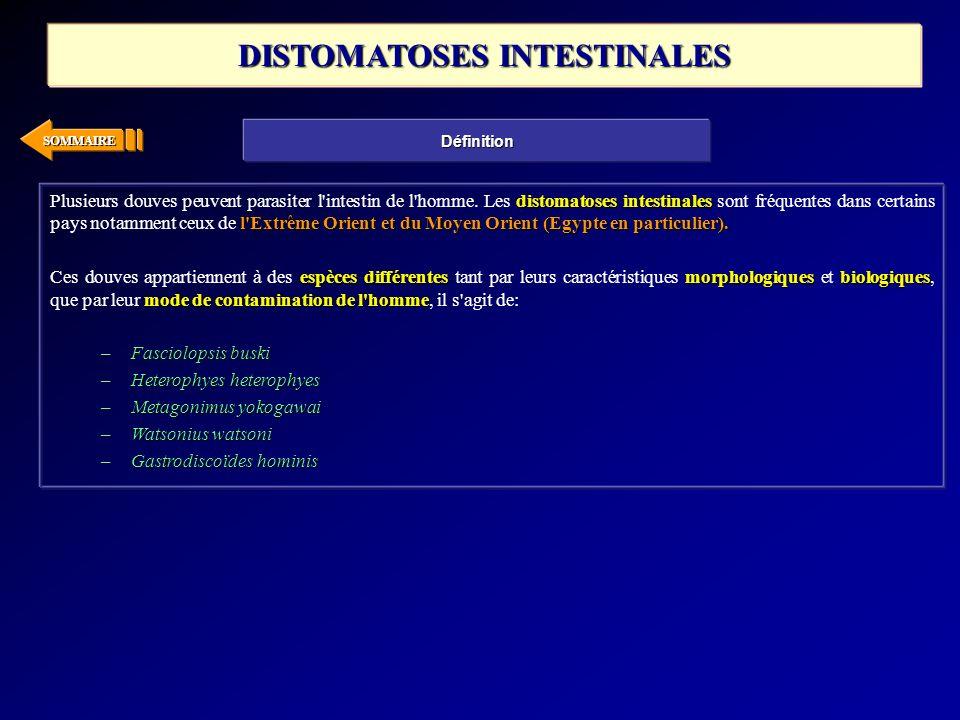 SOMMAIRE distomatoses intestinales l'Extrême Orient et du Moyen Orient (Egypte en particulier). Plusieurs douves peuvent parasiter l'intestin de l'hom