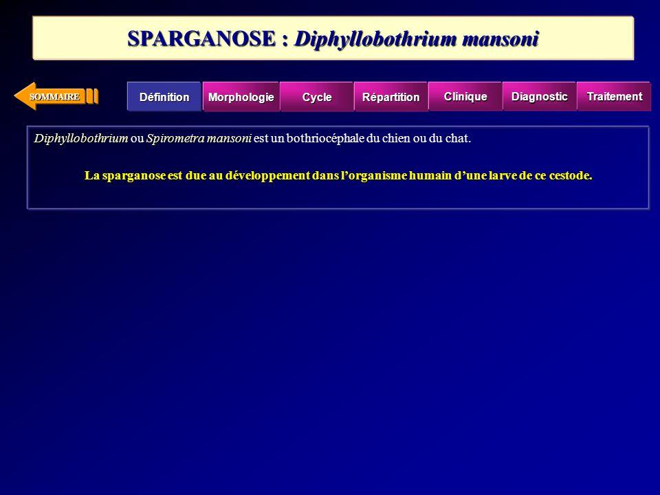 SOMMAIRE DiphyllobothriumSpirometra mansoni Diphyllobothrium ou Spirometra mansoni est un bothriocéphale du chien ou du chat. La sparganose est due au