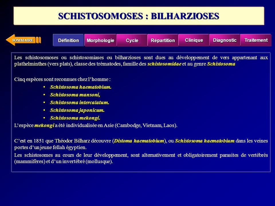 SOMMAIRE plathelminthesschistosomidaeSchistosoma Les schistosomoses ou schistosomiases ou bilharzioses sont dues au développement de vers appartenant