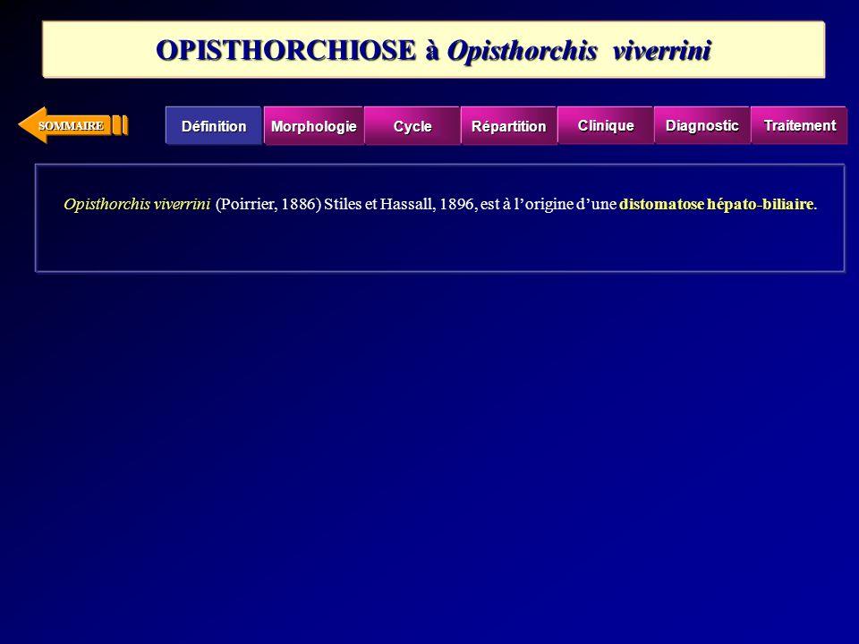 SOMMAIRE Opisthorchis viverrinidistomatose hépato-biliaire Opisthorchis viverrini (Poirrier, 1886) Stiles et Hassall, 1896, est à lorigine dune distom