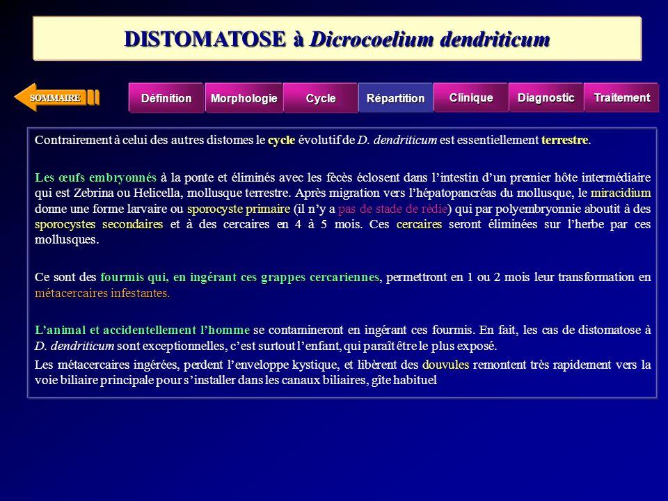 SOMMAIRE cycleterrestre Contrairement à celui des autres distomes le cycle évolutif de D. dendriticum est essentiellement terrestre. Les œufs embryonn