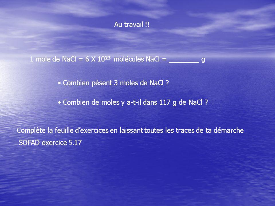 Au travail !! 1 mole de NaCl = 6 X 10 23 molécules NaCl = ________ g Combien pèsent 3 moles de NaCl ? Combien de moles y a-t-il dans 117 g de NaCl ? C