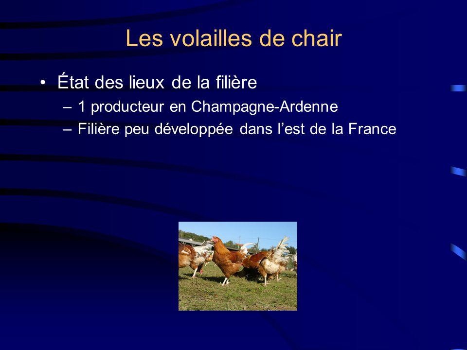 Les volailles de chair État des lieux de la filière –1 producteur en Champagne-Ardenne –Filière peu développée dans lest de la France