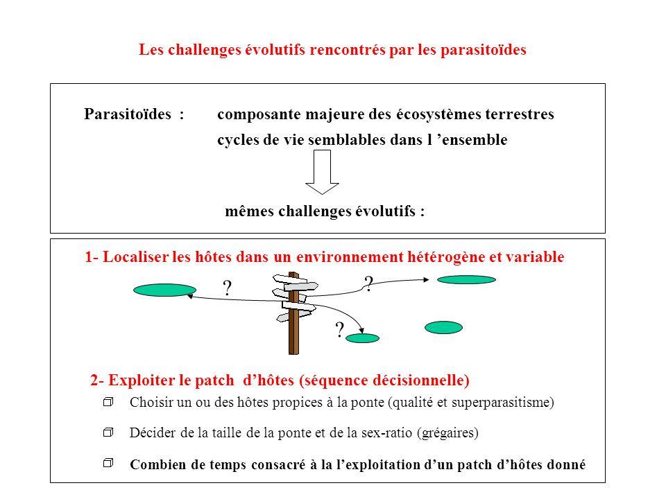 Parasitoïdes : composante majeure des écosystèmes terrestres cycles de vie semblables dans l ensemble mêmes challenges évolutifs : 1- Localiser les hô