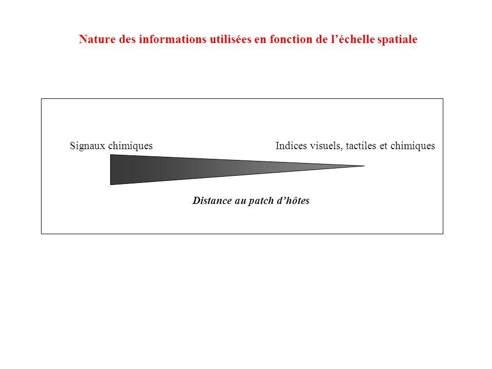 Signaux chimiquesIndices visuels, tactiles et chimiques Distance au patch dhôtes Nature des informations utilisées en fonction de léchelle spatiale