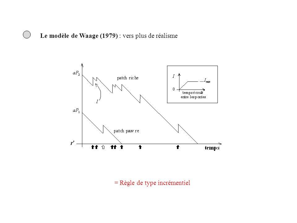 Le modèle de Waage (1979) : vers plus de réalisme = Règle de type incrémentiel