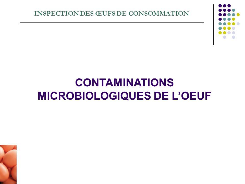 INSPECTION DES ŒUFS DE CONSOMMATION CONTAMINATIONS MICROBIOLOGIQUES DE LOEUF