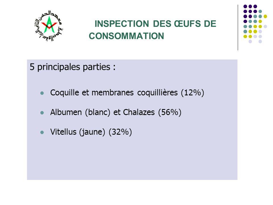 INSPECTION DES ŒUFS DE CONSOMMATION 5 principales parties : Coquille et membranes coquillières (12%) Albumen (blanc) et Chalazes (56%) Vitellus (jaune