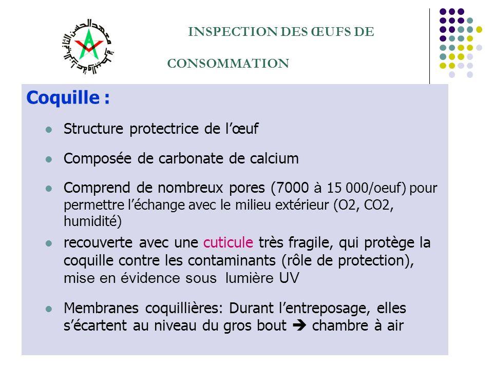 INSPECTION DES ŒUFS DE CONSOMMATION Coquille : Structure protectrice de lœuf Composée de carbonate de calcium Comprend de nombreux pores ( 7000 à 15 0