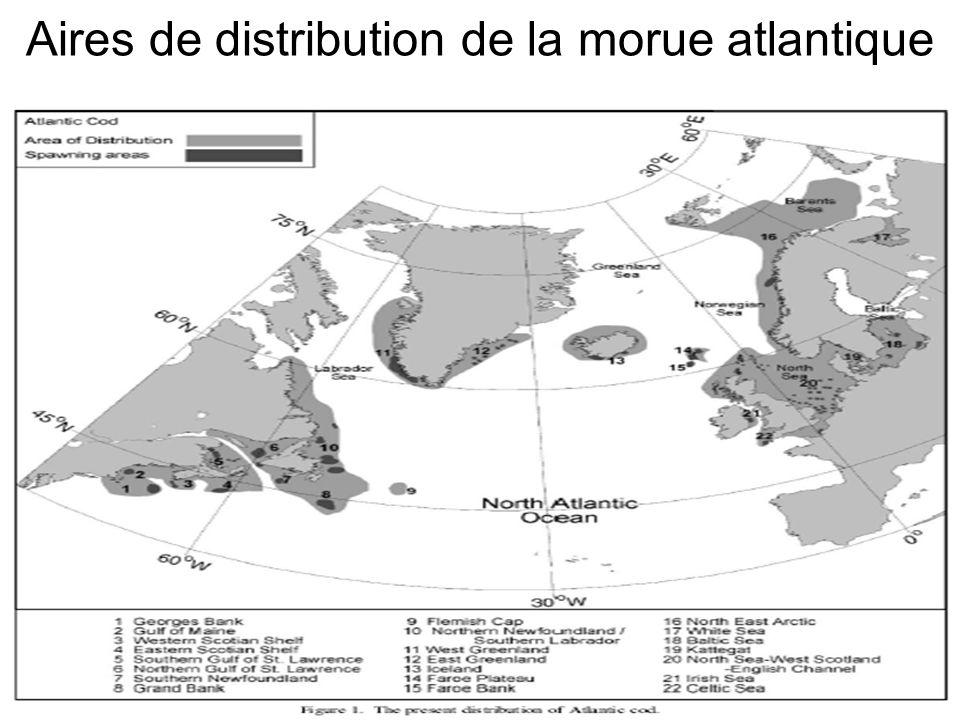 Aires de distribution de la morue atlantique