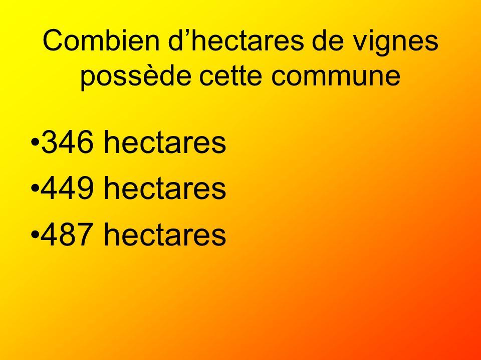 Combien dhectares de vignes possède cette commune 346 hectares 449 hectares 487 hectares