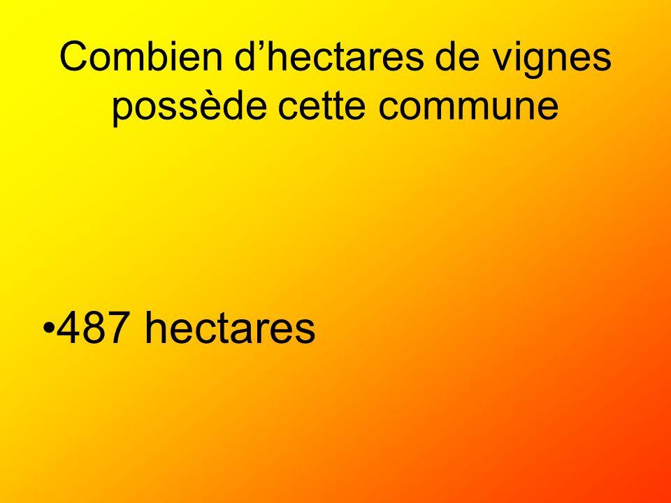 Combien dhectares de vignes possède cette commune 487 hectares