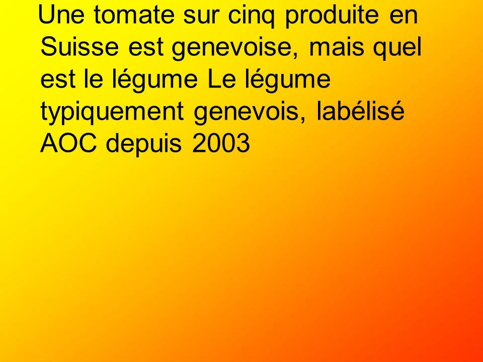 Une tomate sur cinq produite en Suisse est genevoise, mais quel est le légume Le légume typiquement genevois, labélisé AOC depuis 2003