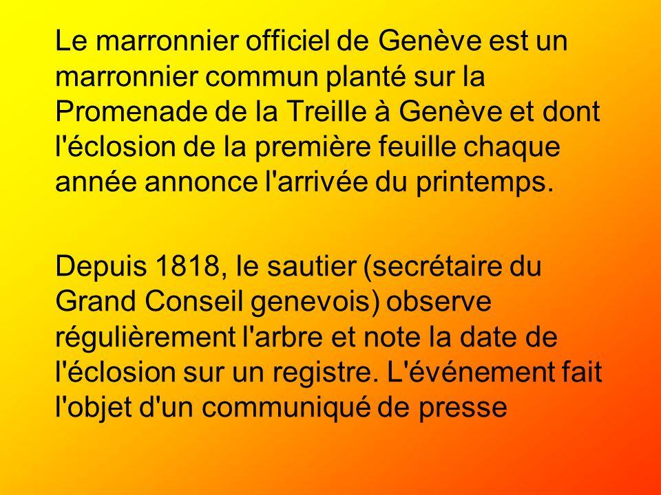 Le marronnier officiel de Genève est un marronnier commun planté sur la Promenade de la Treille à Genève et dont l'éclosion de la première feuille cha