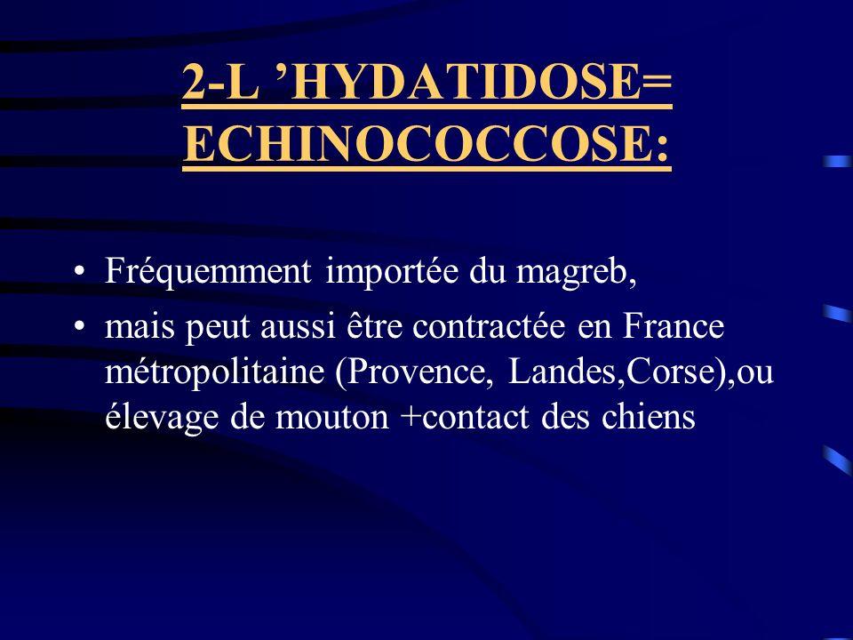 2-L HYDATIDOSE= ECHINOCOCCOSE: Fréquemment importée du magreb, mais peut aussi être contractée en France métropolitaine (Provence, Landes,Corse),ou él