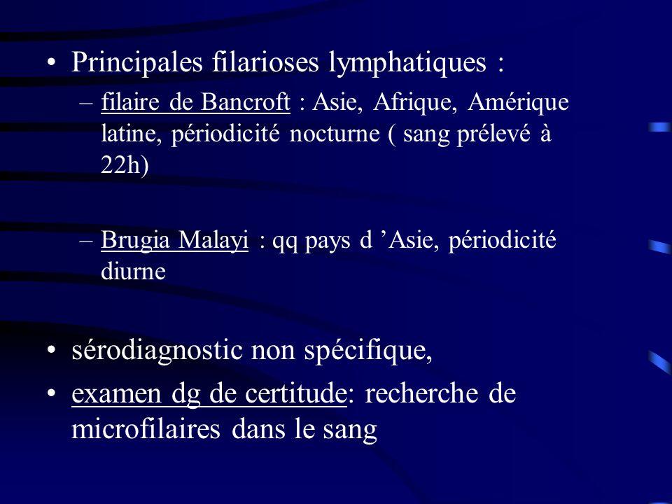Principales filarioses lymphatiques : –filaire de Bancroft : Asie, Afrique, Amérique latine, périodicité nocturne ( sang prélevé à 22h) –Brugia Malayi