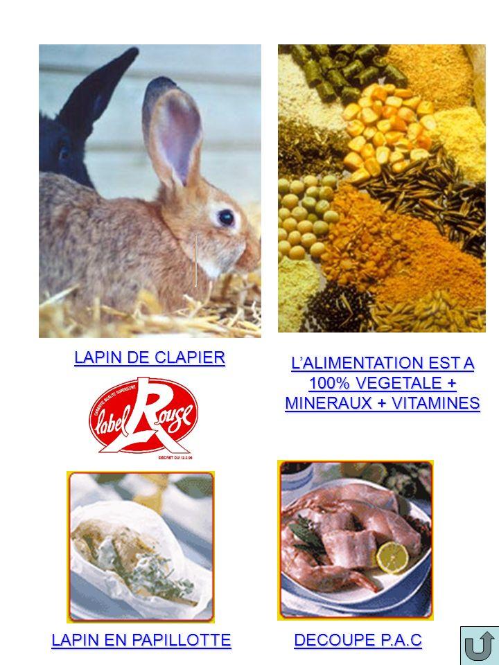 LAPIN DE CLAPIER LALIMENTATION EST A 100% VEGETALE + MINERAUX + VITAMINES LAPIN EN PAPILLOTTE DECOUPE P.A.C