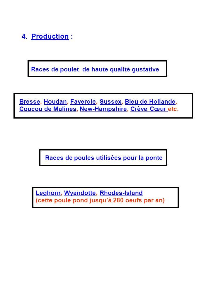 4. Production : Races de poulet de haute qualité gustative BresseBresse, Houdan, Faverole, Sussex, Bleu de Hollande, Coucou de Malines, New-Hampshire,